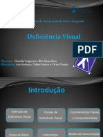 Deficiencia Visual Ana Victor Telma FINAL