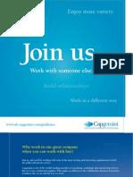 2010 Capgemini Web Brochure