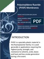 Polyvinylidene Difluoride (PVDF) Membranes