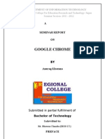 Google Chrome Report 1