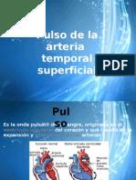 Pulso Arteria Temporal Superficial