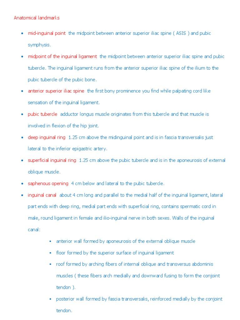 Anatomical Landmarks | Anatomical Terms Of Location | Abdomen