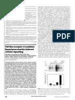 Toll-like receptor-2 mediates lipopolysaccharide-induced cellular signalling