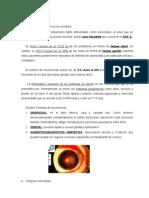 Continuación de Virus (4-12-07). Dra Sánchez-Pedreño