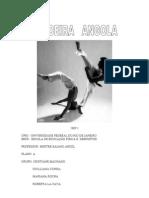 capoeira angola