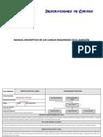Manual de Cargos2
