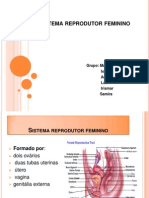 Sistema Reprodutor Slides