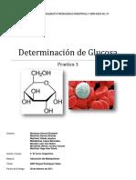 practica metabolismo glucosa