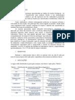 Bíoquimica - Enzimas na indústria clínica (97-2003)