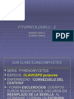 fitopatologia 2.3