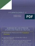 fitopatologia 2.2