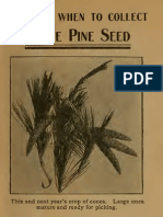 42706702 How and When to Collect Pine Seeds