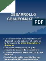 Embriologia craneomaxilofacial