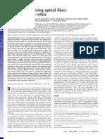 PNAS 2007 Franze 8287 92 (Celulas de Muller)