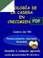 27.1 - patología de la cadera II (generalidades y DDC)
