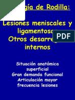 30 - patología de rodilla II