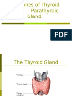 Hormones of Thyroid and Parathyroid Gland