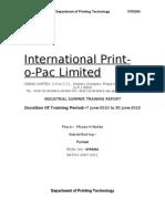 IPP training report