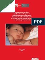 RM862-2008 Intervenciones para la Reduccion de la Mortalidad Neonatal - 1er Nivel