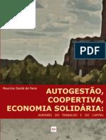 Autogestão, Cooperativa, Economia Solidária
