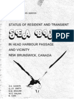 Seabirds in Head Harbour Passage and Vicinity