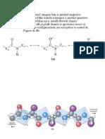 Clase_Proteinas2_Bioquímica I