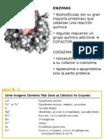 Clase_Enzimas_Bioquímica I