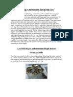 How Big Do Pythons and Boas Really Get