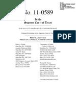 Allcat v. Combs, Amicus Brief – Nikki Lang - Received