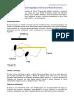 FLAUTA - DIGITAÇÃO - Posição das Mãos e dos Dedos