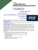 m3 Elemente de Proiectare Frunza 13abc Fr