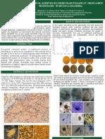 APIMONDIA Microbiology Pollen