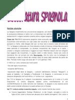 letteratura spagnola 2010-2011