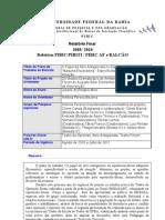 modelo_de_relatorio_final_para_PIBIC-PIBITI-PIBIC_AF_e_Balcao