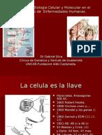 Conferencia Dr Silva