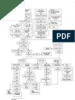 Pathway Pielonefritis