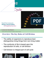Lecture 2, Ch 12, Cell Cycle