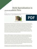 bamboo birds specialization in southeastern peru