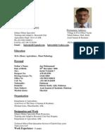 CV Modified THafeez Text