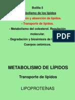 Clase metab. de lípidos II-2011
