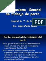 Mecanismo  General de trabajo de parto[1]