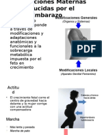-Modificaciones Maternas