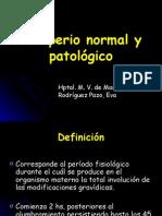 Puerperio normal y patológico