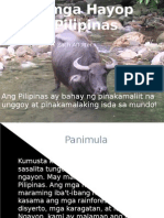 Ang Mga Hayop Sa Pilipinas (Animals in the Philippines-Filipino Version)