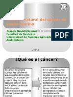 Historia Natural del cáncer de cuello uterino