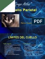 Cuello Parietal, Renzo[1]