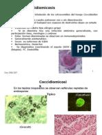 Micologia Micosis Subcutaneas y Sistemicas