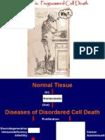 מוות תאי מתוכנת- אפופטוזיס שיטות וכווני מחקר בביולוגיה מולבביולוגיה מוליקולרית