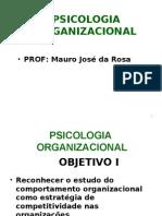COMPORTAMENTO ORGANIZACIONAL COMO ESTRATÉGIA