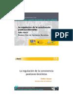 La regulación de la convivencia peatones y bicicletas (Esther Anaya)
